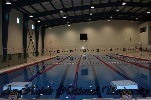 قاعة السباحة في كلية التربية