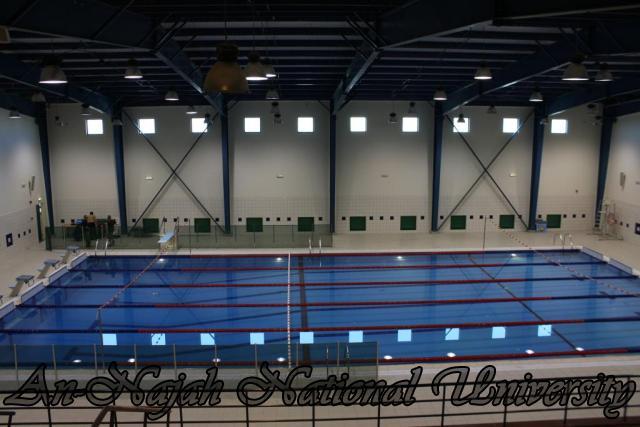 قاعة السباحة في كلية التربية الرياضية
