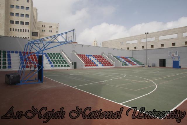 ملعب كرة السلة - كلية التربية