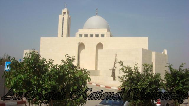 المسجد - المركز الاسلامي