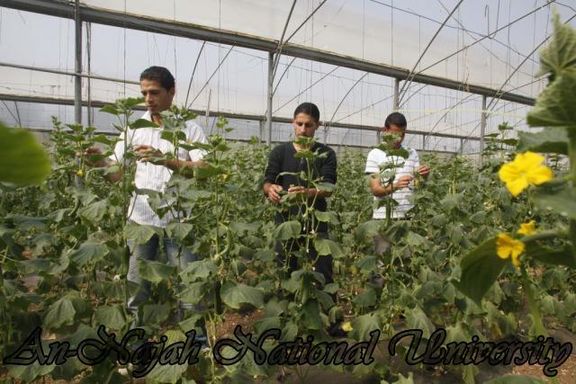 كلية الزراعة والطب البيطري