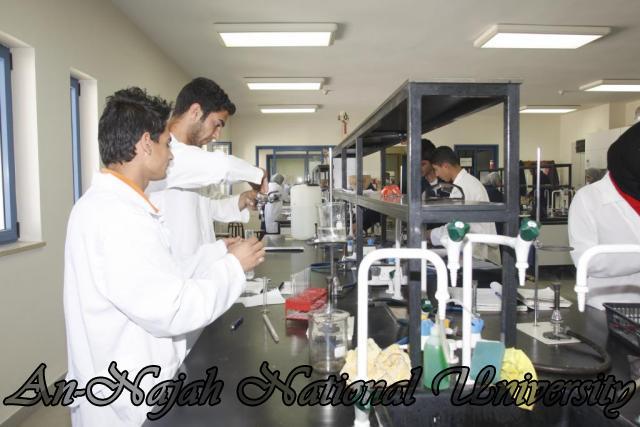 كلية العلوم