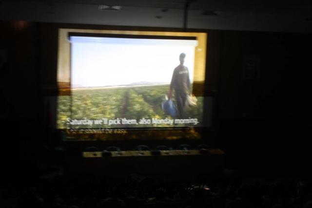افتتاح مهرجان شاشات  (57)