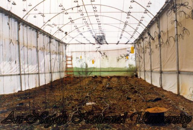 كلية الزراعة ومعهد الدراسات المائية