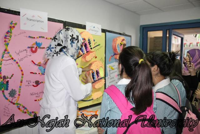 05.11.2012, مهرجان العلوم الفلسطيني الثالث 22