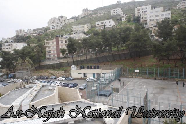 ملعب كلية الرياضة - الحرم القديم